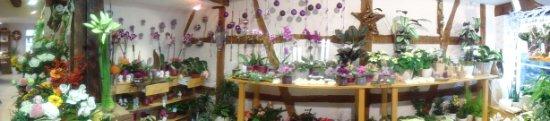 adventsausstellung-2012-zuly-wien-163