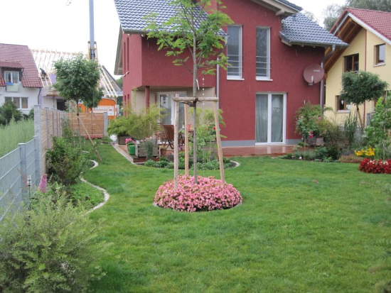 kenzingen-2010-neueanlage-eingang-garten-zaun-terraze-bepflanzung-8